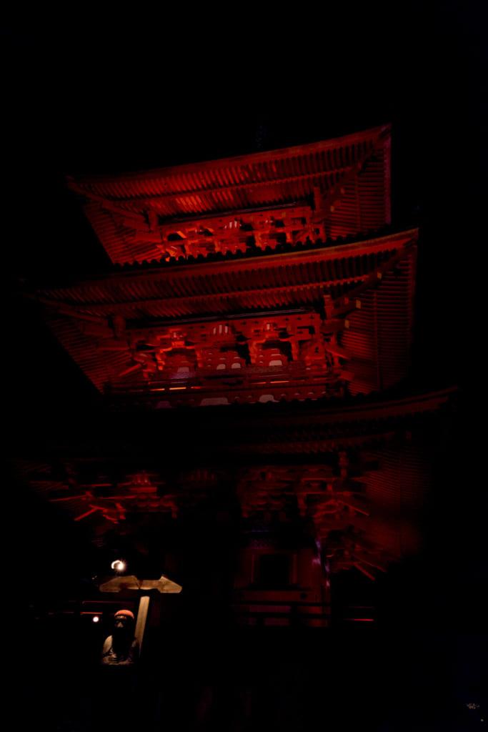 FE 28-70mm F3.5-5.6 OSS SEL2870 キットレンズ レビュー 夜の清水寺 露出補正版