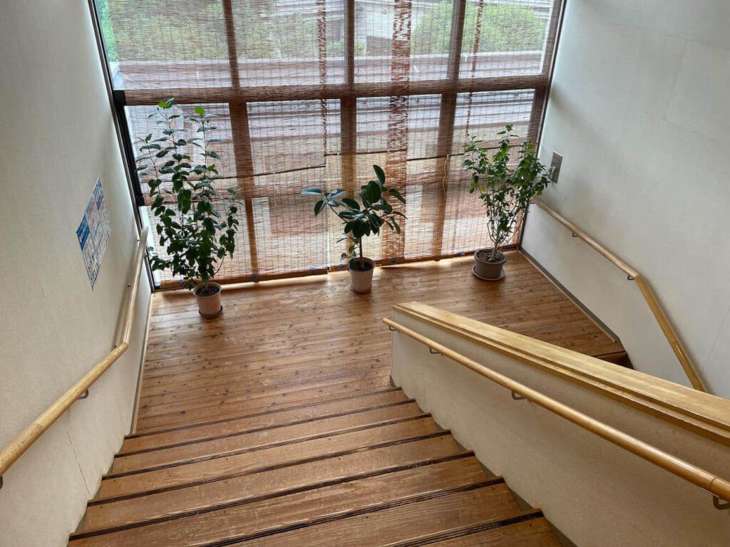 道の駅 両神温泉薬師の湯 なぜか観葉植物が置かれた階段